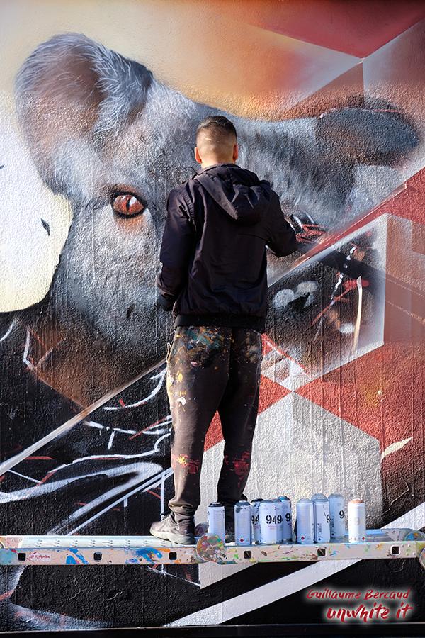 Asur koala spray Mouans-Sartoux