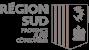 Logo PACA GRIS
